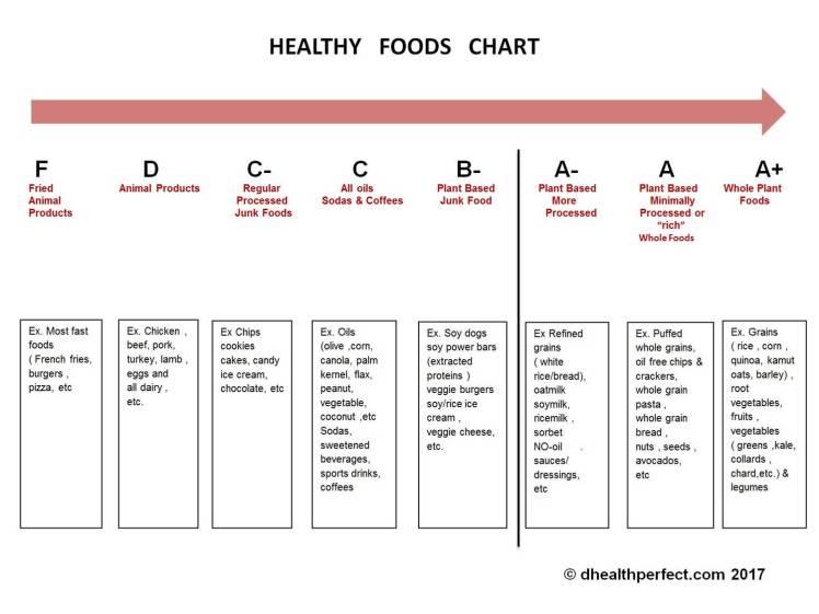 Exsalus - foods DA pic 2